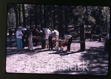 1960s Kodachrome photo slide Man with horses Canyon Trail Trips
