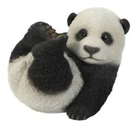 Vivid Arts - REAL LIFE ZOO ANIMALS - Sitting Panda Cub