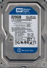 WD3200AAKS-00G3A0 DCM: HHNNNT2AHN WCAT1 Western Digital 320GB