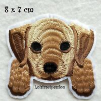 ÉCUSSON PATCH thermocollant, Chien, 8 x 7 cm Applique à repasser