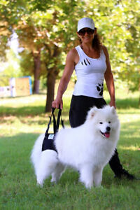 Nature Pet Hunde Tragehilfe Hinten / Gehhilfe / Hebehilfe / Rehahilfe Hunde