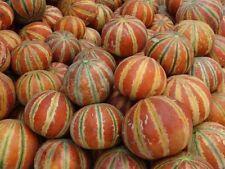 Melon 20PCs Rare Small Heirloom Charentais Gourmet Cucumis Seeds Home Garden