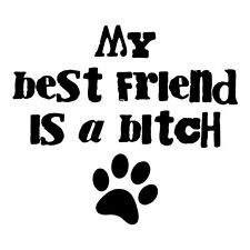My Best Friend is a ***** sticker(available in several vinyl colors)