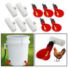 5er Pack Geflügel Trinkwasserbecher   Hen Plastic Chicken Drinker