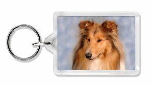 Rough Collie Dog Photo Keyring Animal Gift, AD-RC1K