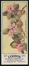 1924 V20 Cowan Candy Co WILD FLOWERS OF CANADA (w/ Coupon) -#17 Trailing Arbutus