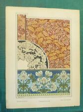 Chevrefeuille Anna Martin litho Grasset art nouveau fin XIXe siècle Plantes