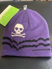 Cannondale Skull Beanie