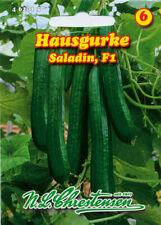 8-9 Samen 4258 ca Gurke Salatgurke Cucumis sativus Hausgurke /'Saladin/' F1