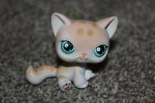 Littlest Pet Shop Leopard Kitty Cat #224 Cream White Blue Eyes LPS Toy Hasbro