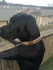 EMBROIDERED PERSONALIZED  Custom  Dog Collar