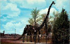 Diplodocus Utah Field House Of Natural History Vernal Utah Postcard