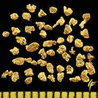 10 20 50 Véritable Goldnuggets en Alaska 1-2mm 20-23 Carat Pièce de Monnaie
