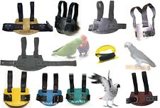 Avianweb African Grey or Eclectus Parrot Harness