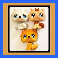 ��Littlest Pet Shop Lps Chow Chow Dog Lot #1983 #117 #384 White Tan Orange ��