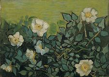 Wild roses Vincent van Gogh Blumen Pflanzen Wildrosen Blüten Strauch B A3 03377