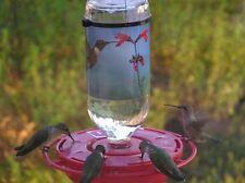 The HummerMagnet Hummingbird Feeder
