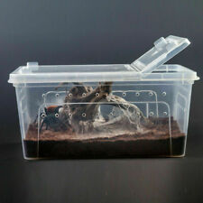 Clear Plastic Box Insect Reptile Transport Breeding Live Food Feeding Container