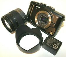 Panasonic Lumix DMC-GF1 Digital Camera W/ G Vario 14-45mm f/3.5-5.6 ASPH Lens
