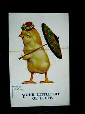 NICE OLD LAWSON WOOD   POSTCARD - YOUR LITTLE BIT OF FLUFF