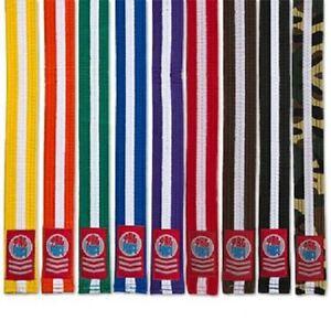 Martial Arts Rank Belts Karate Tae Kwon Do Child Adult Double Wrap White Stripe