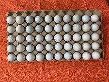 celadon blue coturnix quail hatching eggs 48+