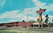 Thunderbird Lodge Hardeeville SC Roadside Postcard