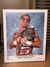 WWF WWE NWA WCW Original Shawn Michaels 8x10 Promo Photo P-344