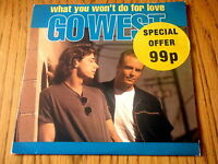 "GO WEST - WHAT YOU WON'T DO FOR LOVE    7"" VINYL PS"