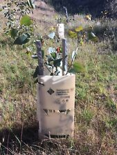 Tree and Plant Guards (Aust Made) EARTH 100 pieces Inc 200 Stakes and ties