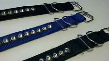 Dog collar size 21.7 inch adjustable with stainless steel attachment NEW