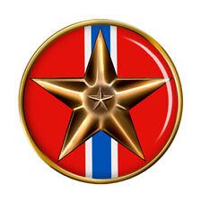 Bronze Star Medal Pin Badge