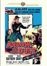 Arrow in The Dust Region 1 DVD