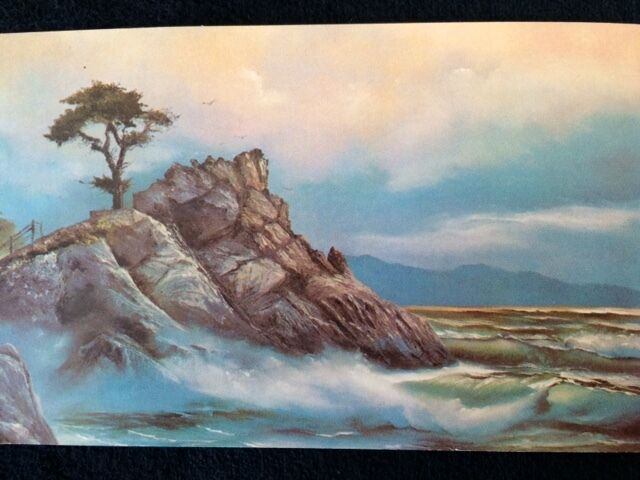 PEBBLES BY THE SEA COLLECTIBLES