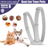 Adjustable Pet Anti Flea and Tick Neck Collar Dog Protection Cat Kitten Tool S/L