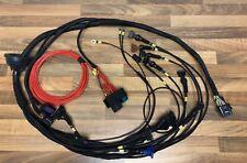 Link ECU G4 + Atom Zetec Juego de Cables & ECU Paquete