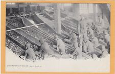 Child Labor Postcard - Screen Room Maltby Breaker Coal Mining Wilkes-Barre PA