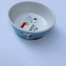 "Peanuts Snoopy Woodstock Charlie Brown Pet Dog Food Bowl Ceramic Dish ""All Gone"""