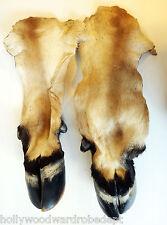 COW hoof TAXiDERMY pelt feet deer fur hide leather bull art craft brown buffalo