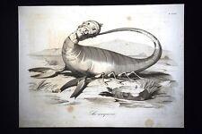 Incisione d'allegoria e satira Rodrigo Borgia o Alessandro VI Don Pirlone 1851