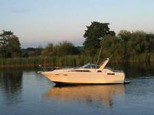 Motorboot Boot Gleiter Sea Ray Daycruiser DA 300
