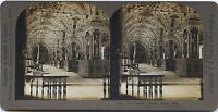 Libreria Vaticano Roma Italia Foto Stereo Stereoview Vintage