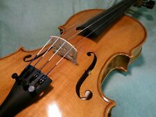 CVD19 Classic 4/4 Intermediate Student Superior Violin Spruce & Maple beautiful!