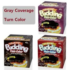 EZN Pudding Hair Color Gray Coverage made in Korea Beauty Cosmetic FREE Samples