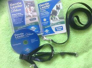 Gentle Leader Deluxe By PetSafe Head collar, 6' Leash, Training, Black, S, New
