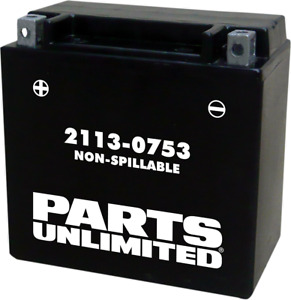 Parts Unlimited AGM Factory Activated Maintenance-Free Battery YTX14