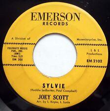 JOEY SCOTT 45 Sylvie / Change Your Ramblin Mind GARAGE Folk ROCK e9838