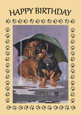 DACHSHUND SHELTER FROM RAIN UNDER UMBRELLA DOG BIRTHDAY GREETINGS NOTE CARD