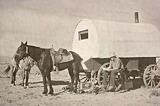 "Old West, Wyoming, Sheep Wagon, Horse, Cowboy Life, 16""x11"" Photo, Vintage WEST"
