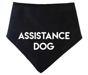 Spoilt Rotten Pets ASSISTANCE DOG Bandana 7 Colour Choices Disabled Dog